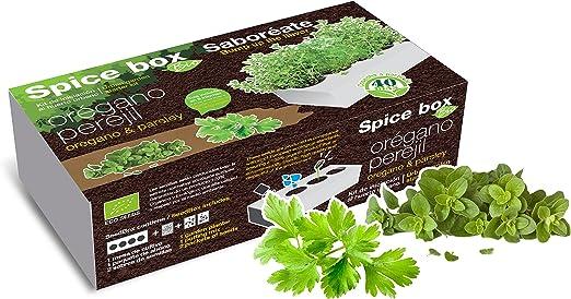 SeedBox PGBISA Kit huerto Urbano de perejil y albahaca ecológicas ...