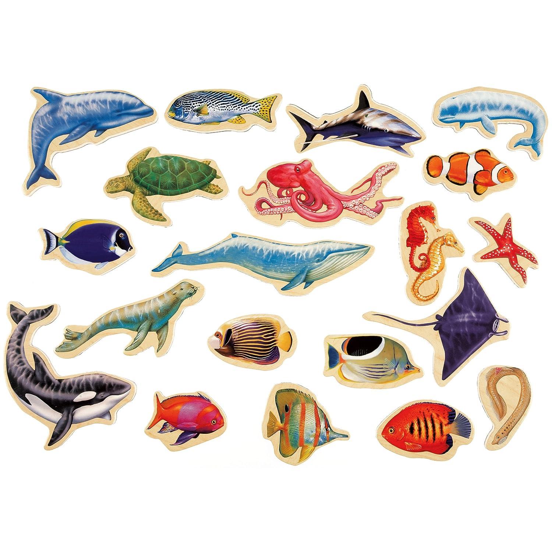 com t s shure sea creatures wooden magnets piece com t s shure sea creatures wooden magnets 20 piece magnafun set toys games