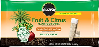 Miracle-Gro Fruit & Citrus Plant Food Spikes Fertilizer For Fruit Trees