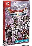 ドラゴンクエストX いばらの巫女と滅びの神 オンライン - Switch