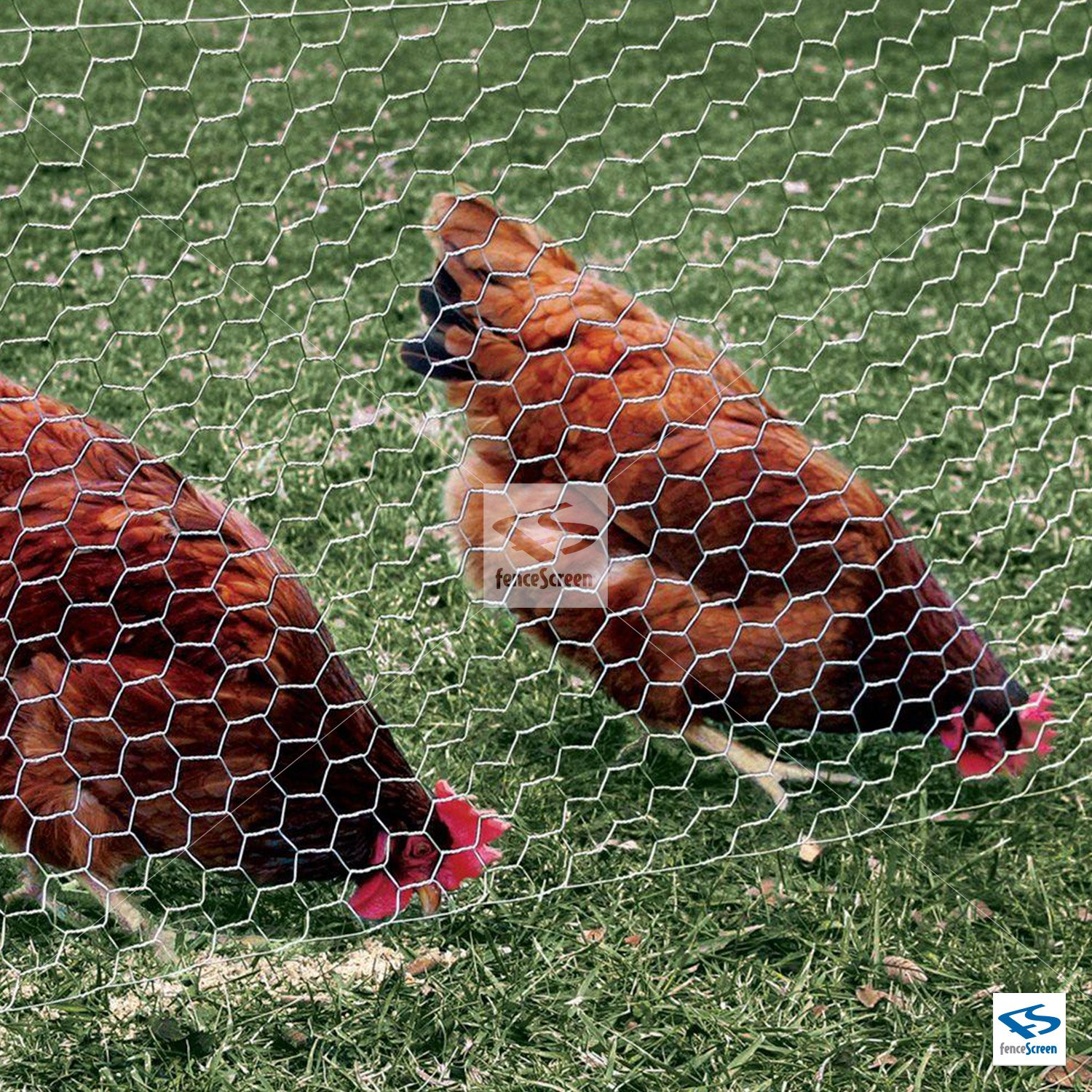FenceScreen Galvanized Steel 1-in Mesh Chicken Wire Poultry Netting (48-in. x 50-ft.) by FenceScreen (Image #2)