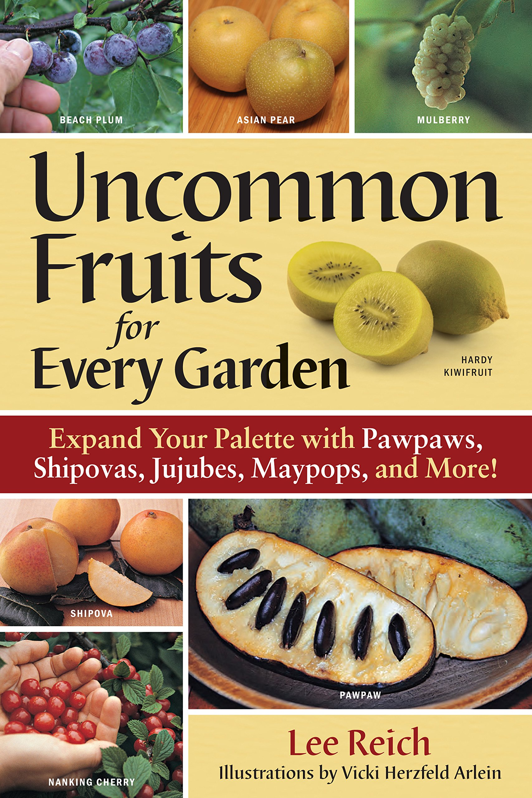 Uncommon Fruits for Every Garden: Lee Reich, Vicki Herzfeld Arlein ...