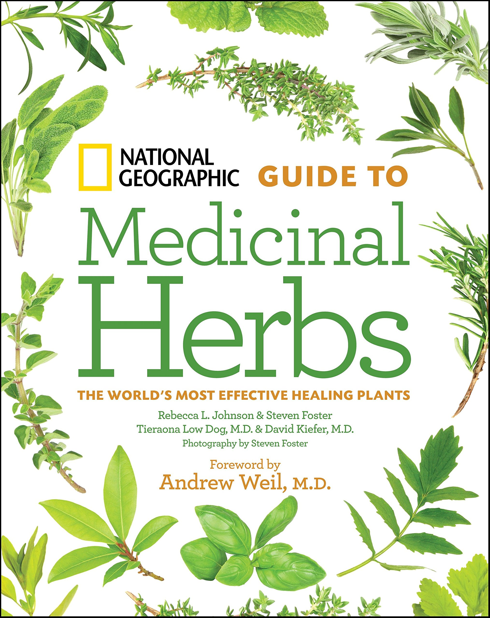 National Geographic Guide Medicinal Herbs product image