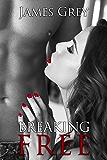 Breaking Free: Erotic short stories