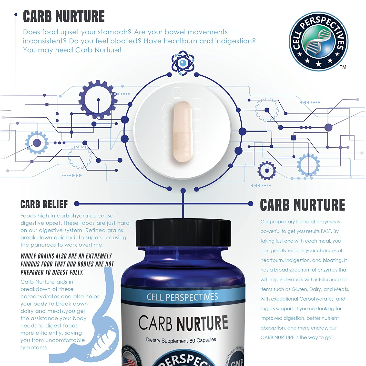 Amazon.com: Carbohydrate Blocker Plant Digestive Enzymes Supplements for men and woman - Amylase, Protease ,Lipase for fat & lipids,Cellulase for cellulite ...