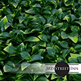 Artificial Hedge - Outdoor Artificial Plant - Great Boxwood and Ivy Substitute - Sound Diffuser Privacy Fence Hedge - Topiary Gardenia Greenery Panels (4, Gardenia)