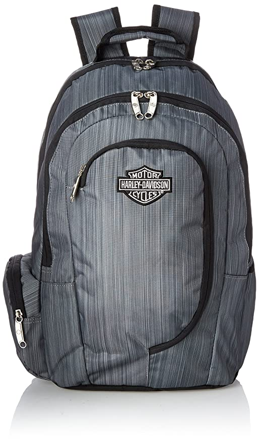 Amazon.com | Harley Davidson Backpack, Steel Gray, One Size ...