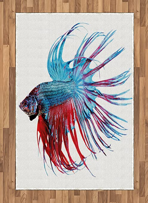 Lunarable Aquarium Area Rug Betta Fish Close Up Dragon Fish With Fringy Tail Tropic Aquatic Life Flat Woven Accent Rug For Living Room Bedroom Dining Room 4 X 5 7 Pale Blue