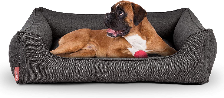 Hyggins Dreamer Plus - Cama ortopédica para Perros, Funda extraíble y Lavable, Base Impermeable