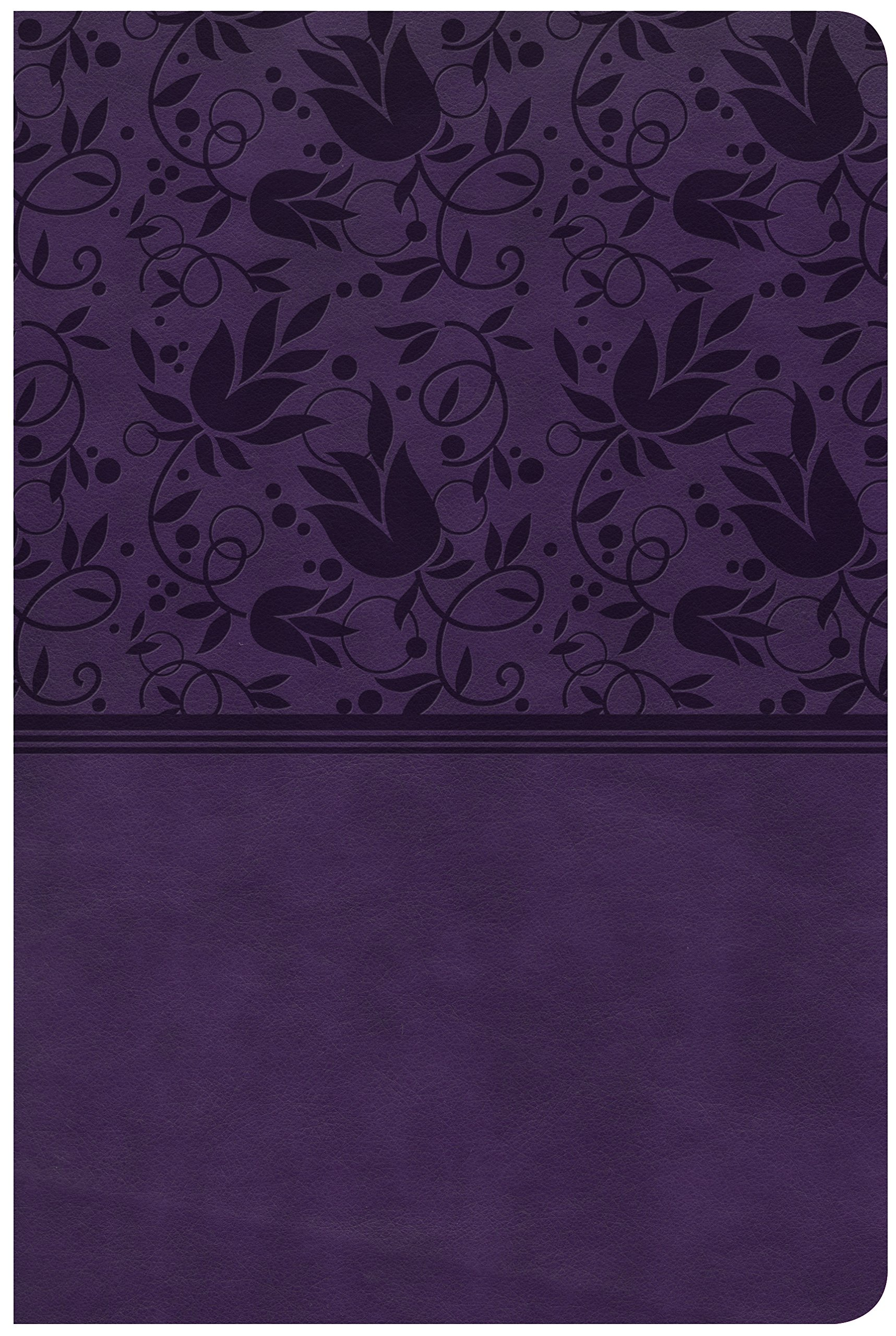 Download CSB Large Print Personal Size Reference Bible, Purple LeatherTouch ebook