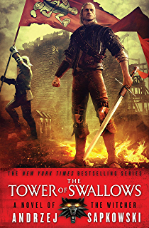 Witcher blood of elves pdf the