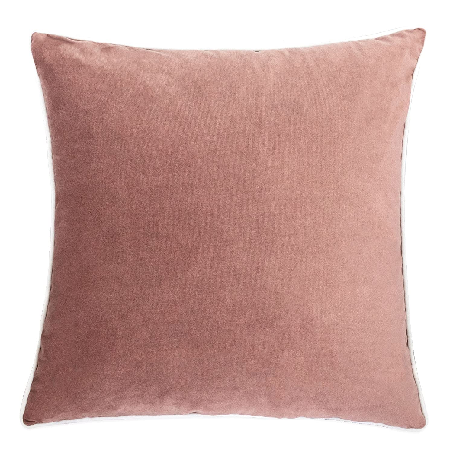 Astounding Homey Cozy Blush Velvet Throw Pillow Cover Pink Series Solid Soft Fuzzy Cozy Warm Slik Decorative Square Couch Cushion Pillow Case 20 X 20 Inch Cover Squirreltailoven Fun Painted Chair Ideas Images Squirreltailovenorg