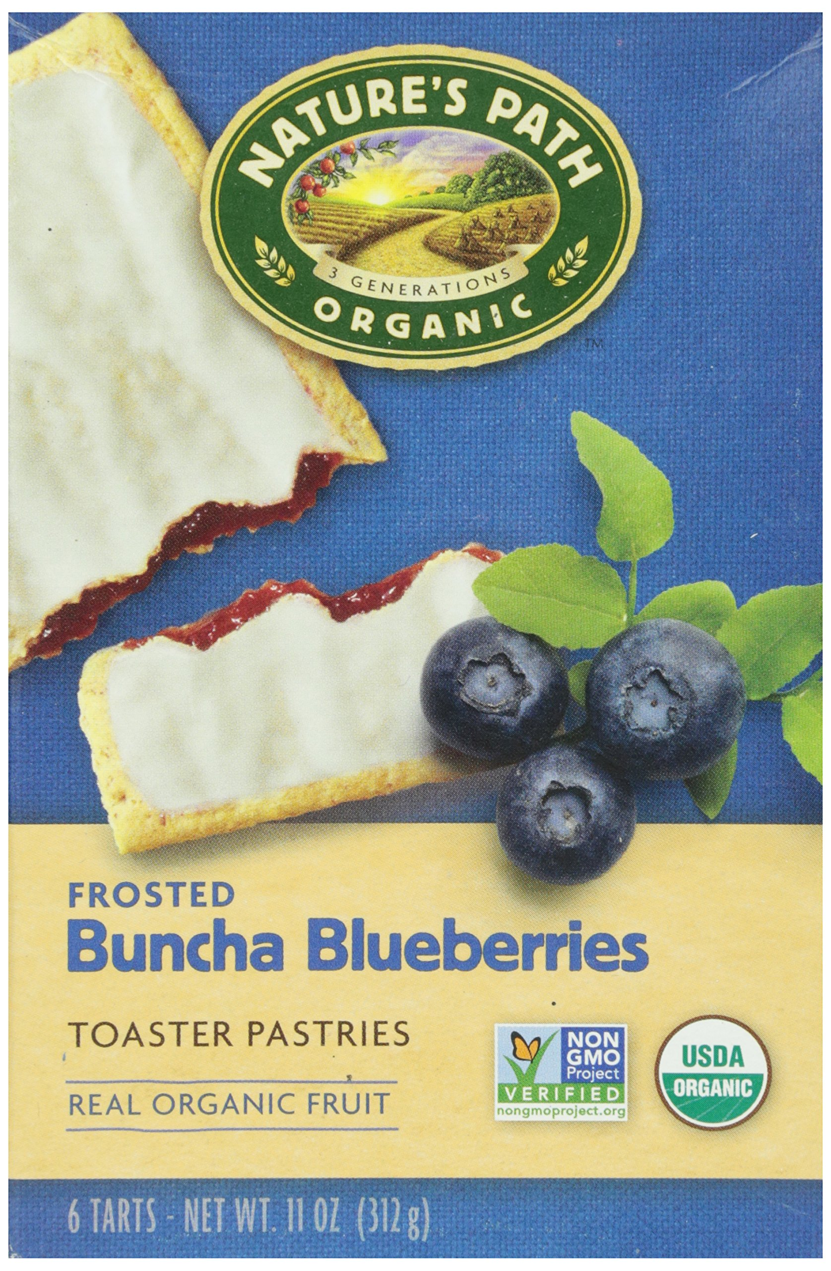 Nature's Path, Organic Toaster Pastries, Blueberry Frosted, 6 ct