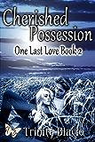 Cherished Possession (One Last Love Series Book 2)