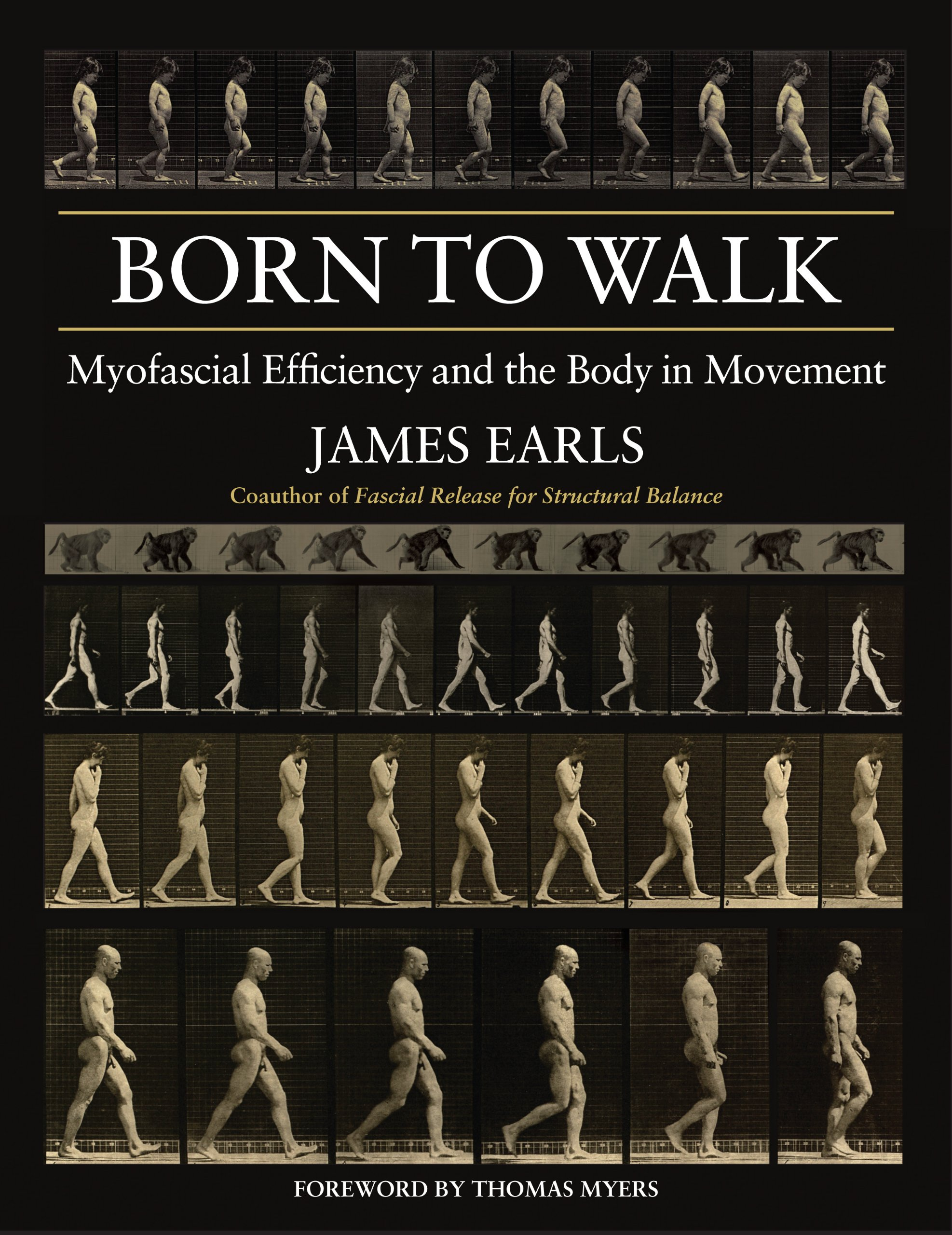 Born to Walk: Myofascial Efficiency and the Body in Movement: Amazon ...