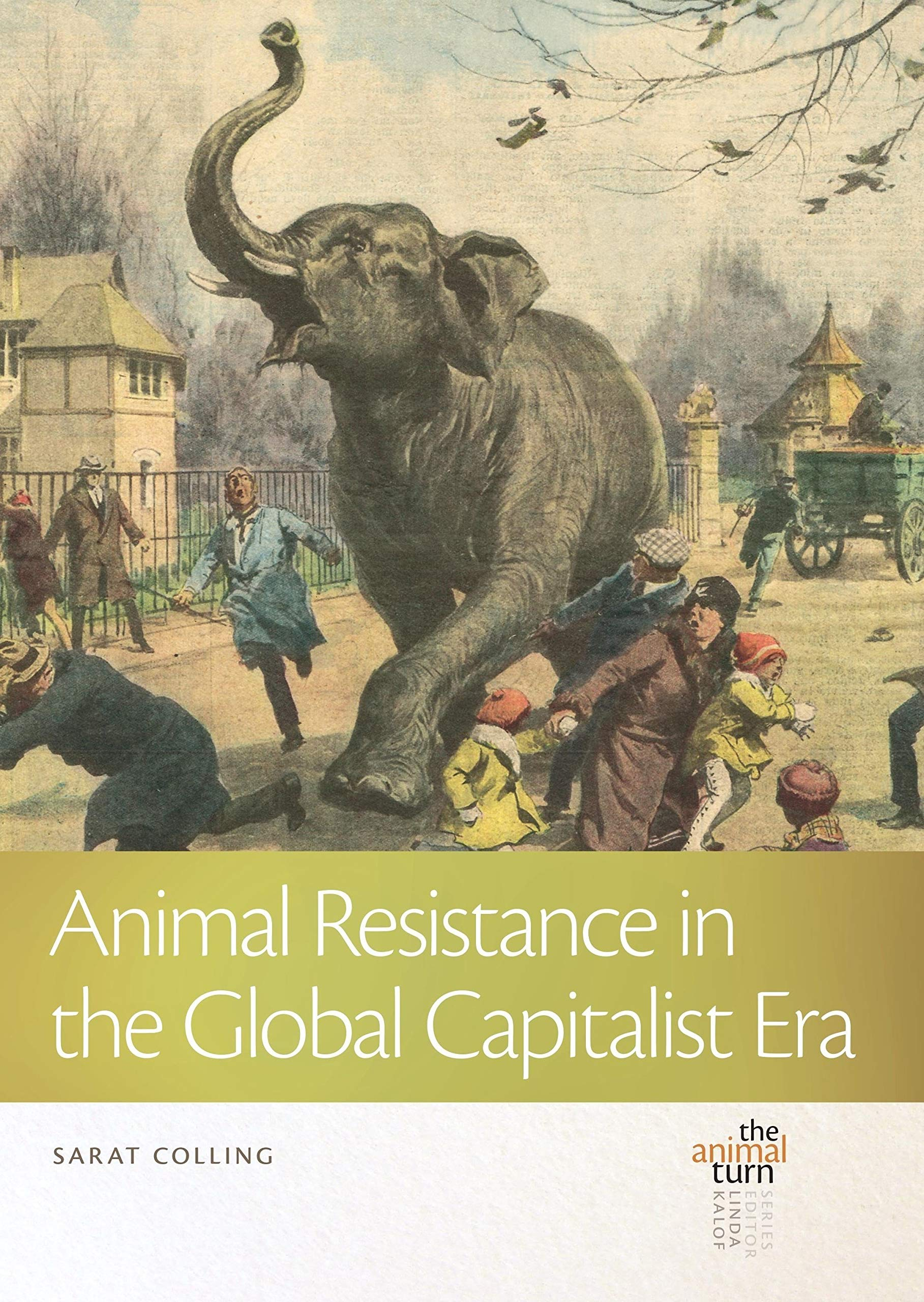 Animal Resistance in the Global Capitalist Era (The Animal Turn): Colling,  Sarat: 9781611863772: Amazon.com: Books