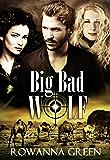 Big Bad Wolf (Hostage Book 3)