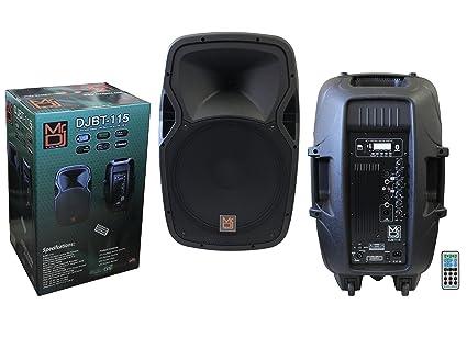 Amazon.com: MR. DJ djbt115 15
