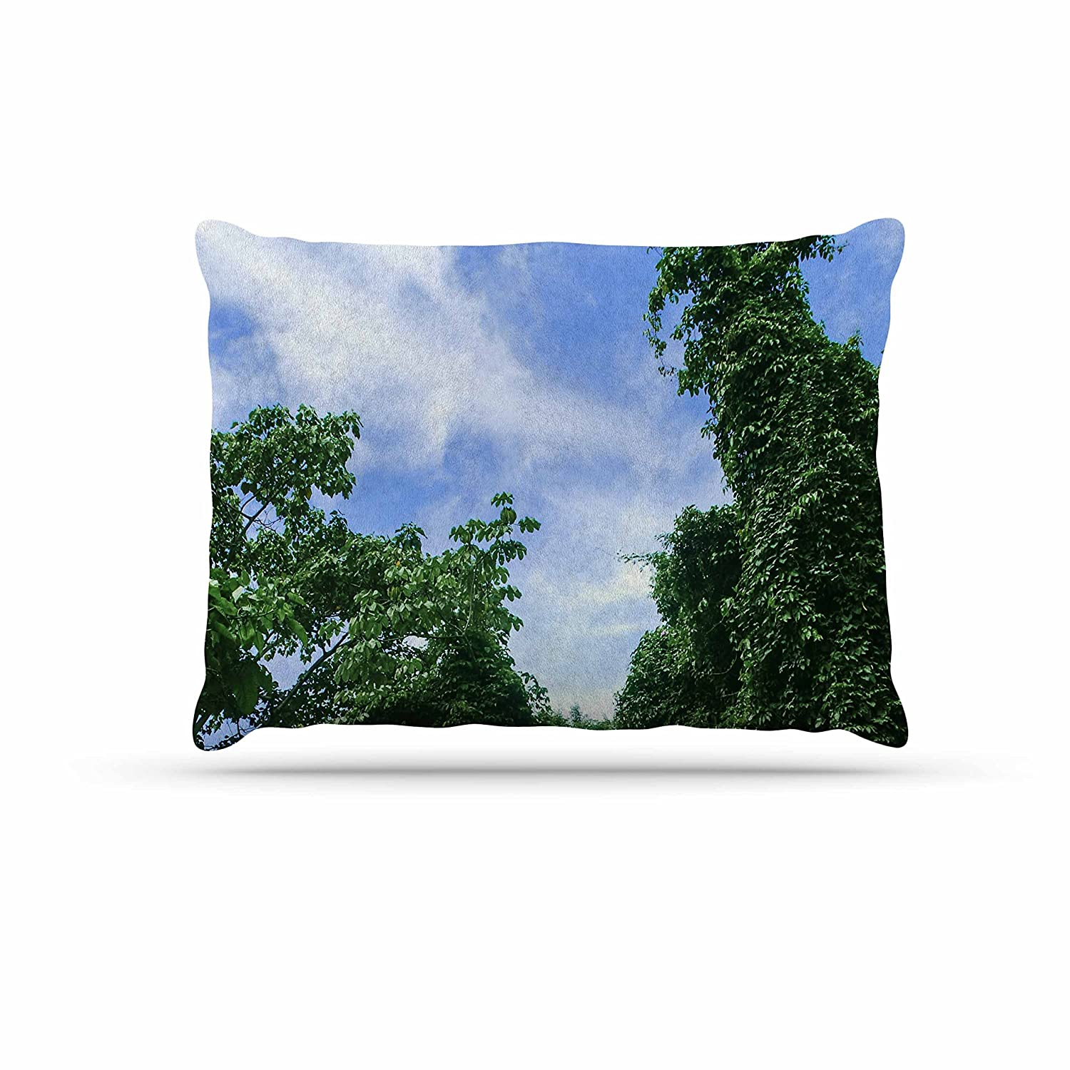 KESS InHouse Nick Nareshni Forest to The Ocean Green bluee Photography Dog Bed, 50  x 40
