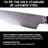 """Zenware Bushido Series 8"""" Inch Japanese VG10 High Carbon Stainless Steel Bread Knife"""