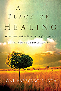 a place of healing wrestling with the mysteries of suffering pain and gods