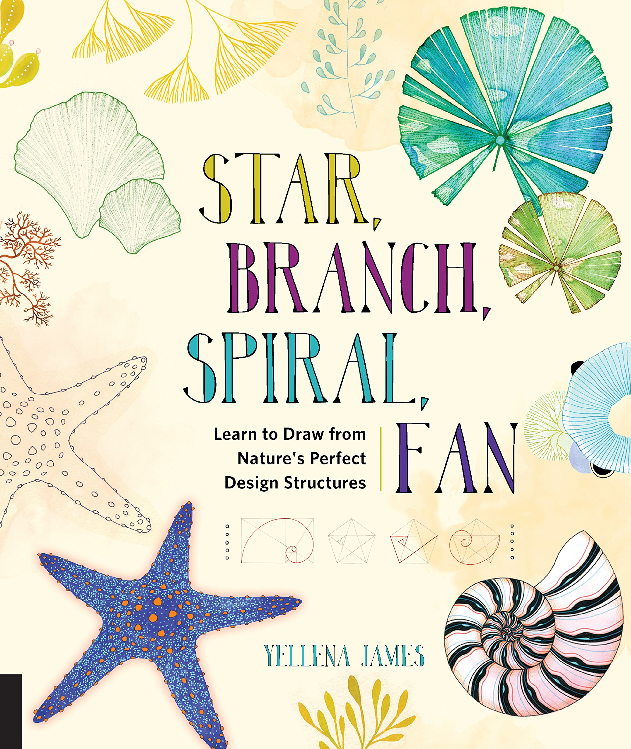 Star Branch Spiral Fan Learn To Draw From Nature S Perfect