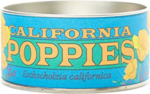 California Poppy | Flower Seed Grow Kit | The Jonsteen Company
