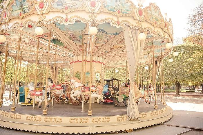 Amazon.com: Paris, France Tuileries Garden Carousel Original Fine ...