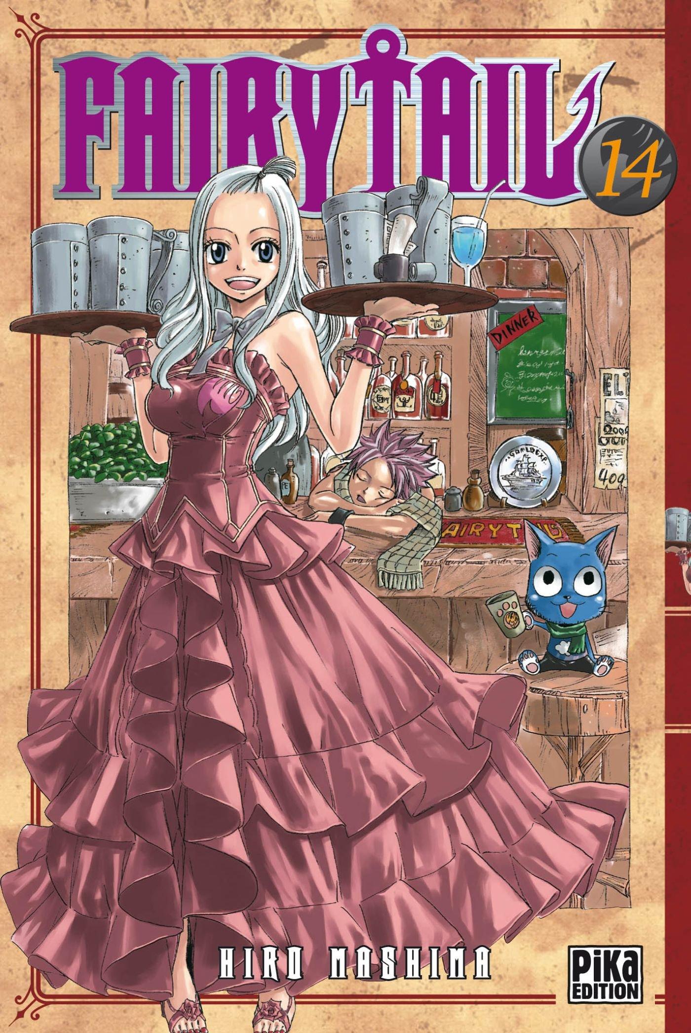 Fairy Tail T 14 Hiro Mashima 9782811603380 Books Amazon Ca