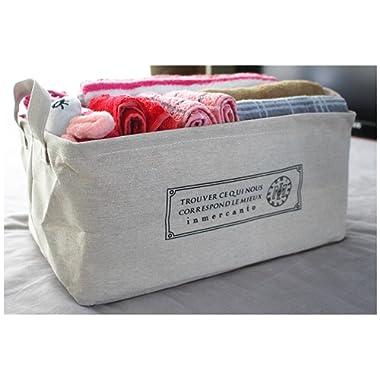Jasis Woo ASAPS Canvas Fabric Cube Foldable Organizer Storage Basket with Handle (Large, French (Large Size))