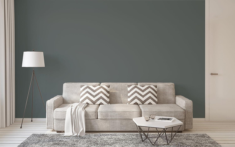 Hochwertig McPaint Bunte Wandfarbe Anthrazit   10 Liter   Weitere Graue Farbtöne  Erhältlich   Weitere Größen Verfügbar: Amazon.de: Baumarkt