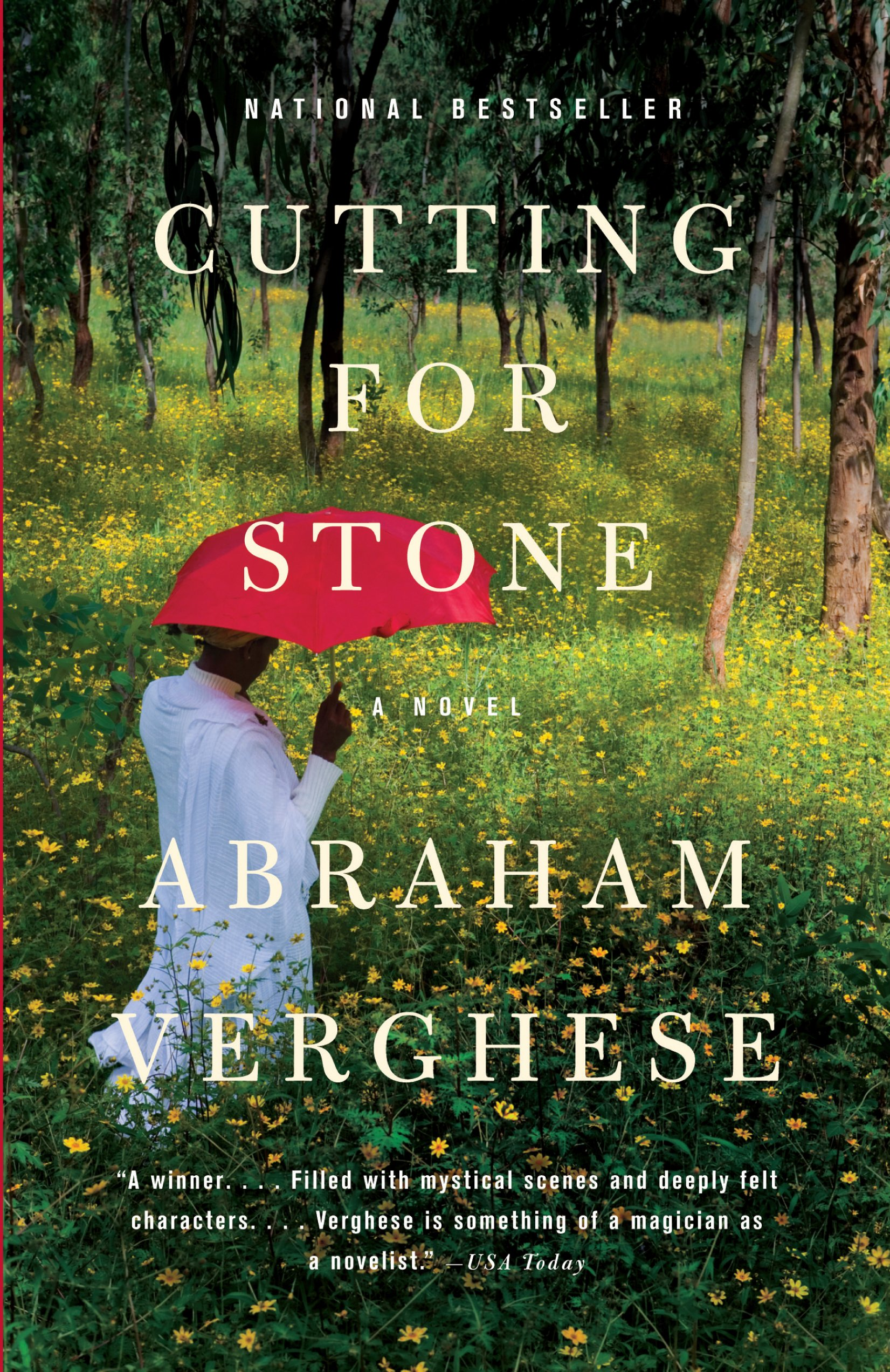 Download Cutting For Stone (Thorndike Core) pdf