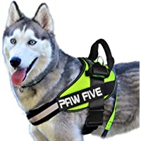 Paw Five CORE-1 Reflective Dog Harness with Built-in Waste Bag Dispenser Adjustable Padded No-Pull Easy Walk Control for…