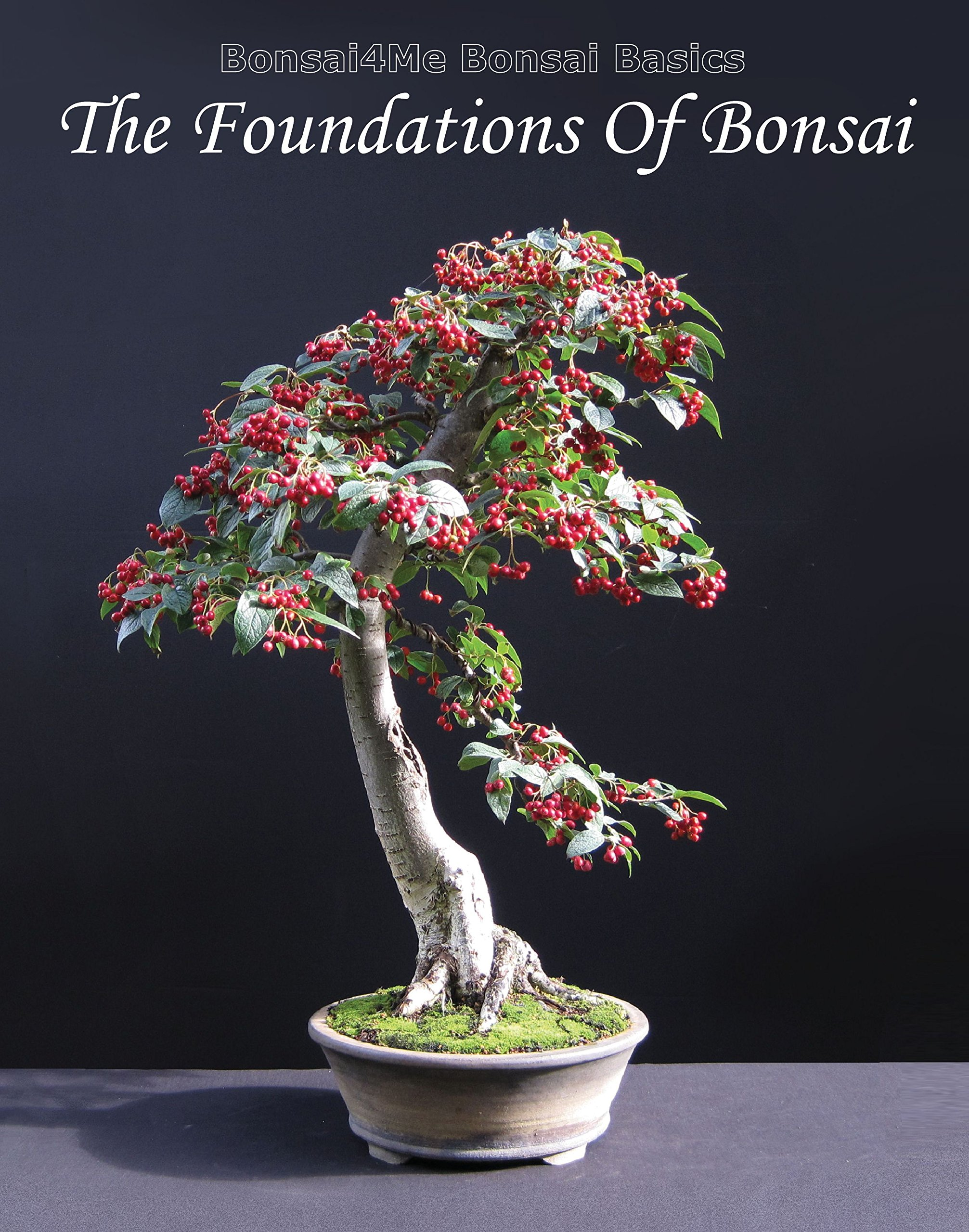 Bonsai4me Bonsai Basics Harry Harrington product image