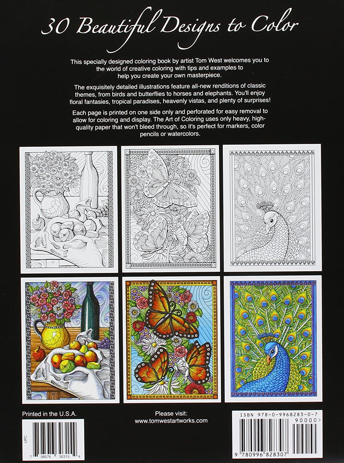 The art of color book - Amazon Com The Art Of Coloring An Adult Coloring Book For Everyone Toys Games