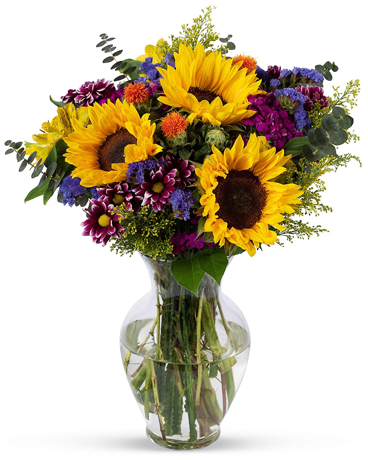 251 & Benchmark Bouquets Flowering Fields With Vase (Fresh Cut Flowers)