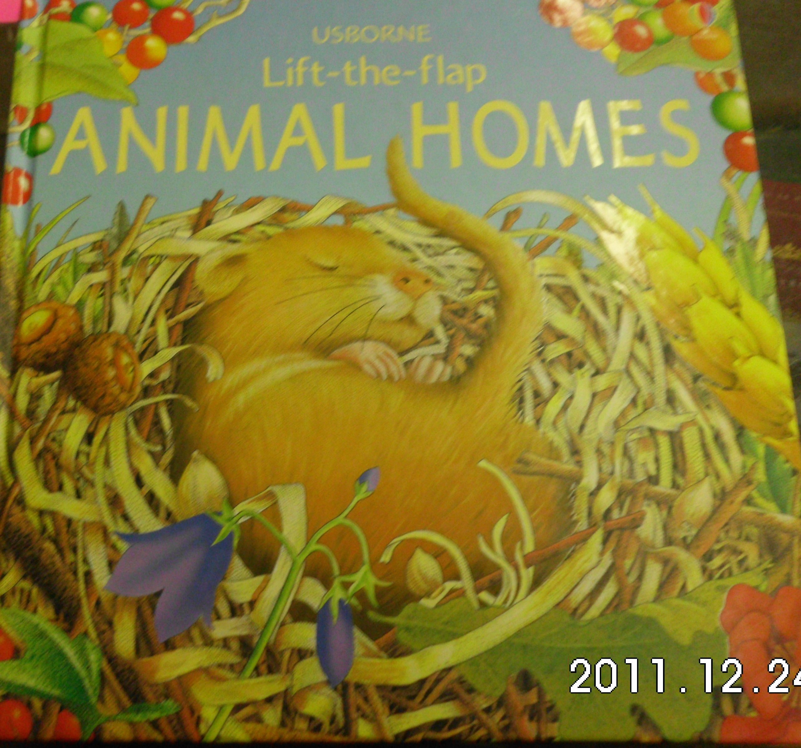 Animal Homes (Luxury Lift the Flap Learners) ebook
