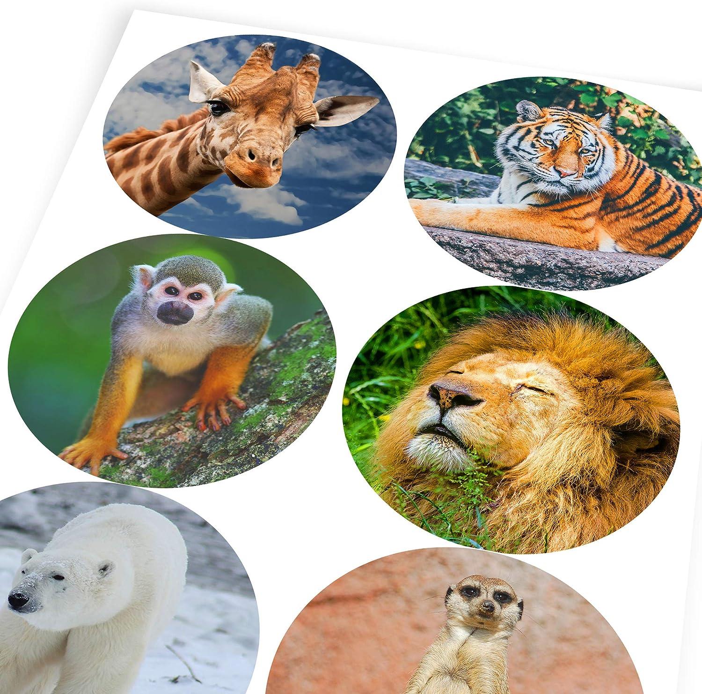 Children 6 Stickers @ 9.5cm Teachers Graphic Flavour Majestic Wild Animals Reward Sticker Labels Parents
