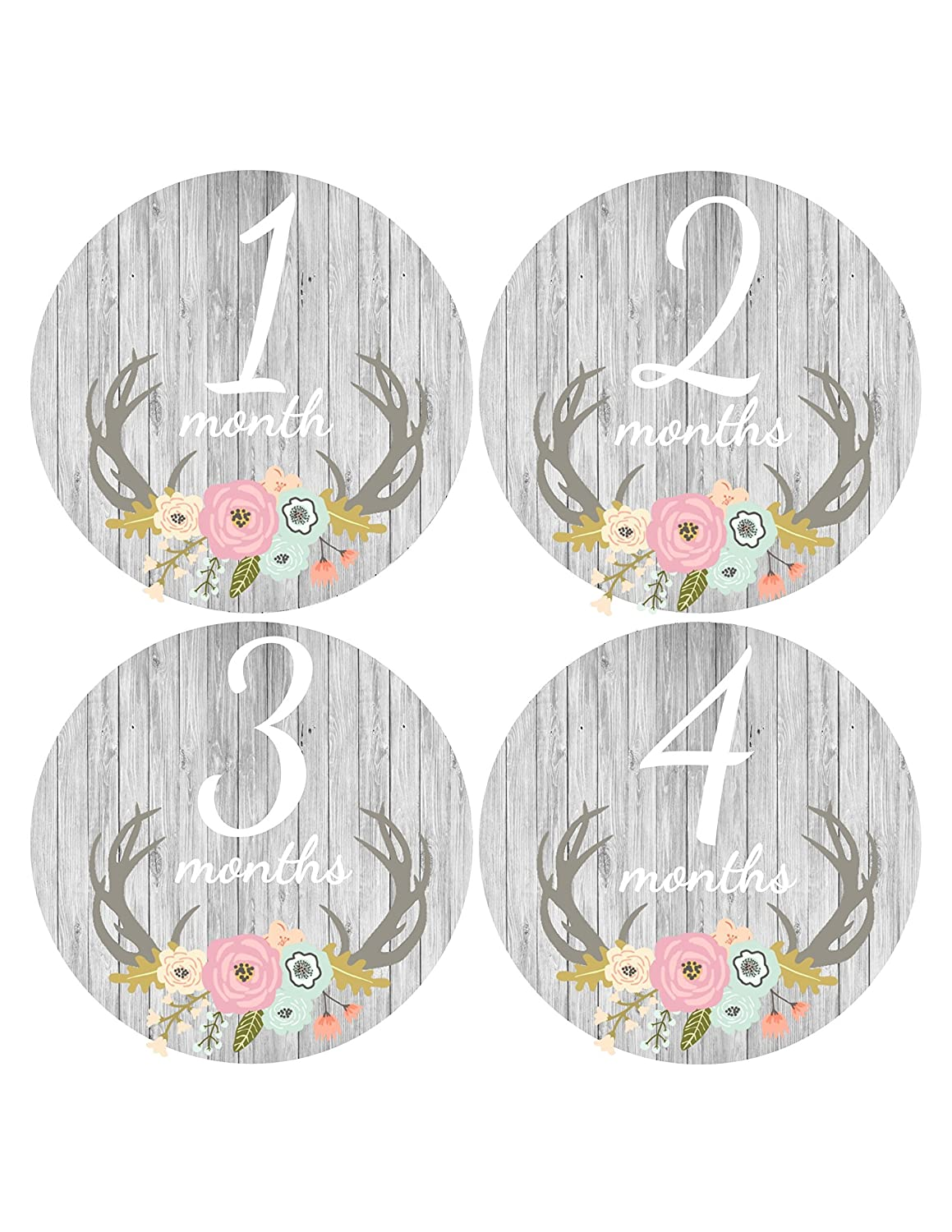 Baby Girl Month Sticker with Antlers in Mint & Pink