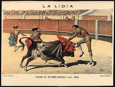 Impresión antigua - Las corridas de toros-tauromachia-arena-torero-españa - PL. 34-la Lidia-1883: Amazon.es: Hogar