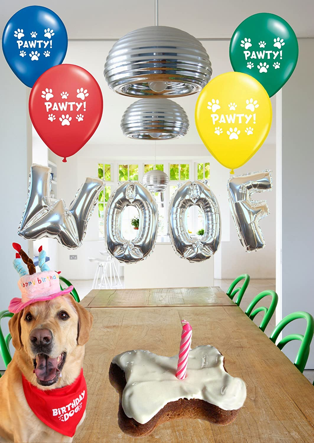 Dog Birthday Party Decorations Kit By Blast In A Box Blue Hat Puppy Cake