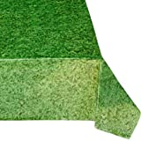 Grass Tablecovers (4), Great for Minecraft Birthdays, Easter Table Settings, Nature Themed Events