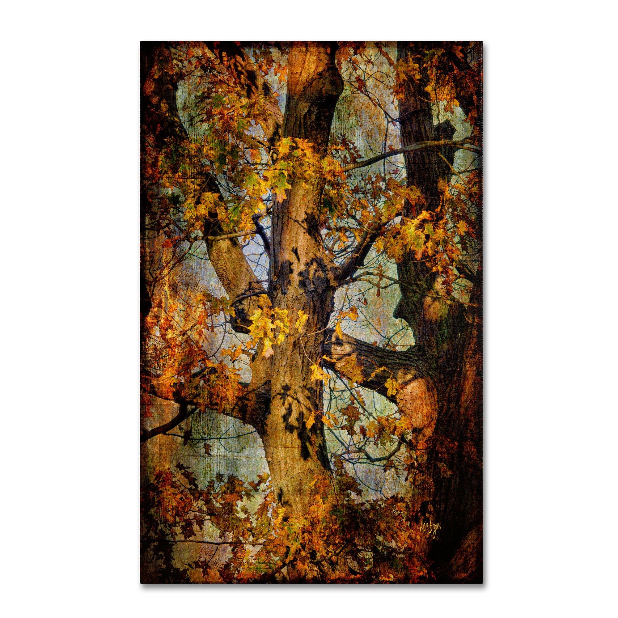 Autumn Oaks in Dance Mode Artwork by Lois Bryan, 12 by 19-Inch Canvas Wall Art