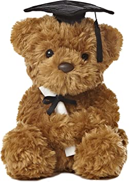 Graduation Bear toy