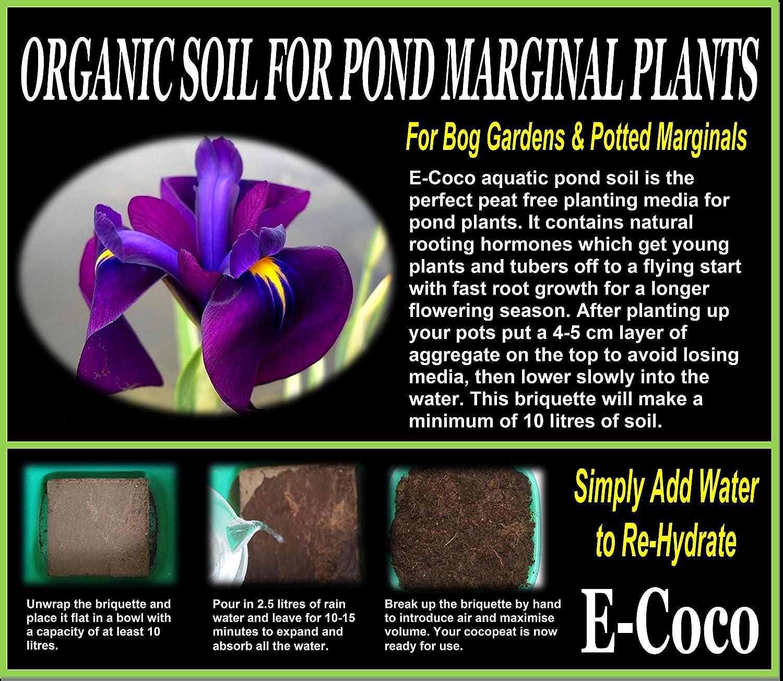 Aquatic Pond Soil 20 litres Aquatic Compost for MARGINAL Plants Pond Soil for MARGINALS Compressed BRIQUETTE
