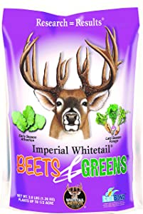 Whitetail Institute Beets & Greens Deer Food Plot Seed for Fall Planting - Blend of Sugar Beets, Kale, Turnip and Radish to Attract and Hold Deer Throughout Fall and Winter