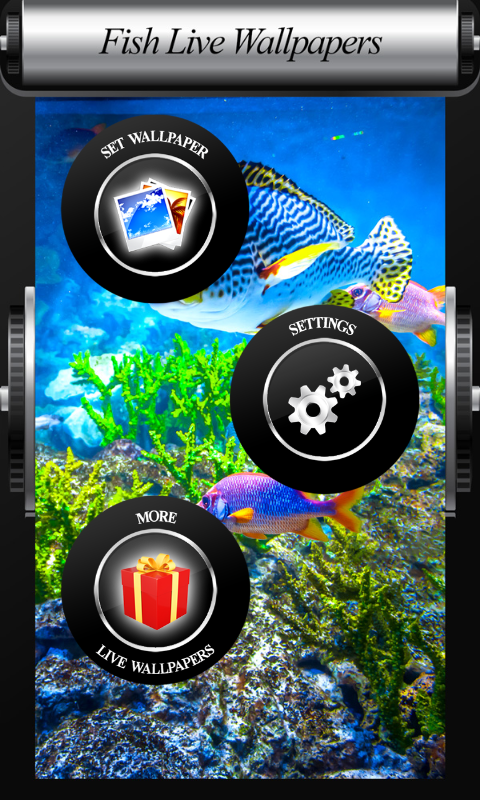 Fish live wallpapers appstore for android for Fish live game