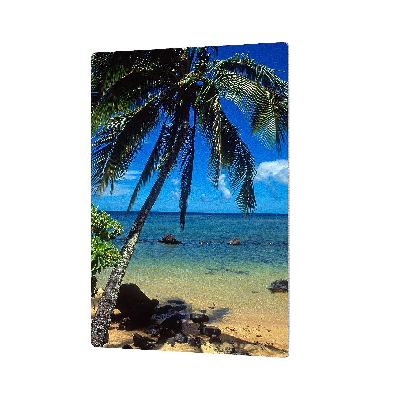 24 by 36 ArtWall Kathy Yates Beautiful Anini Beach Artmetalz Aluminum Print