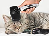 The Self Cleaning Slicker Brush For Small Dogs and