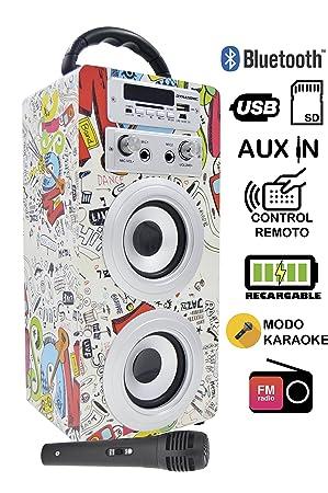 Karaoke Anlage Bluetooth - Kinder Karaoke Player - Mikrofon mit Lautsprecher Boxen Bluetooth Akku-Lautsprecherbox (USB-SD-Slo